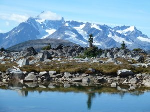 The Canadian Wilderness