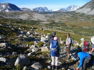 Backpacking Trips Canada
