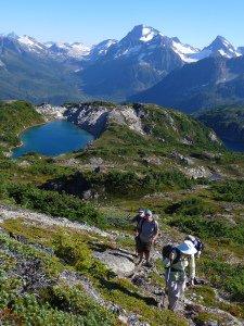 Bella Coola Alpine Beauty